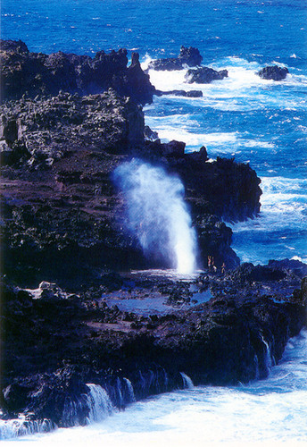 P323 - Blow Holes Postcard 50 Pack