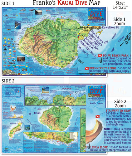 Kauai Dive Map (Laminated)