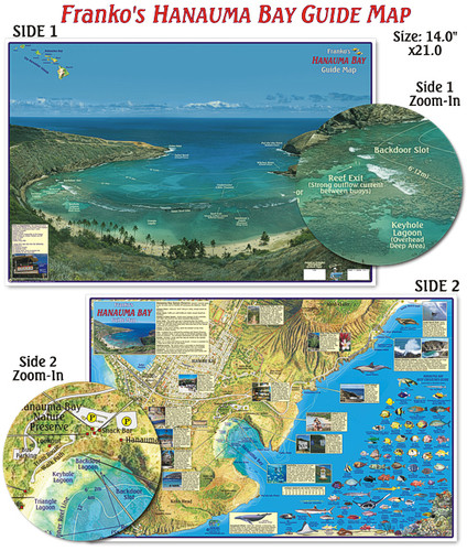 Hanauma Bay Guide (Laminated)