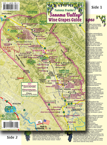 Sonoma Valley Grapes Card