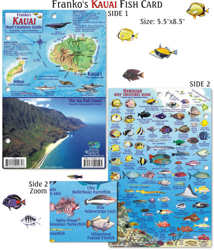 Kauai Fish Card