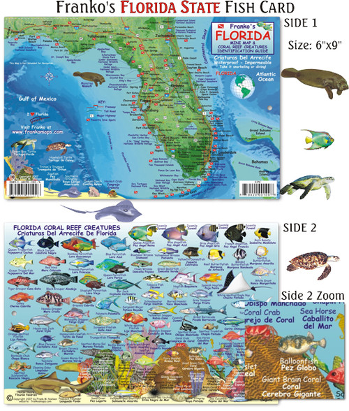 Florida fish card mail order hawaii for Mail order fish