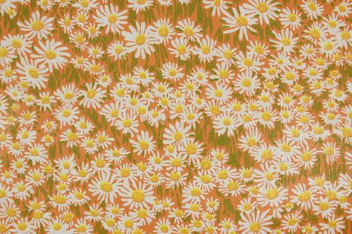 1970s Vintage Wallpaper Retro Daisies on Orange