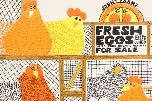 1970s Retro Vintage Wallpaper Orange Yellow Fresh Eggs Hens
