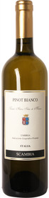 Scambia 2016 Pinot Bianco Bianco 750ml