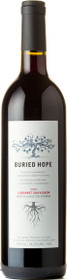 Buried Hope 2010 Cabernet Sauvignon 750ml