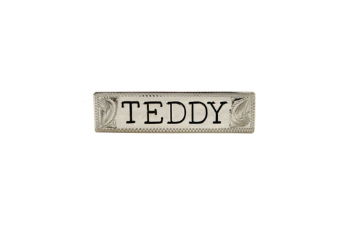 """Nameplate Engraved Letter 2"""" Silver Squared End"""
