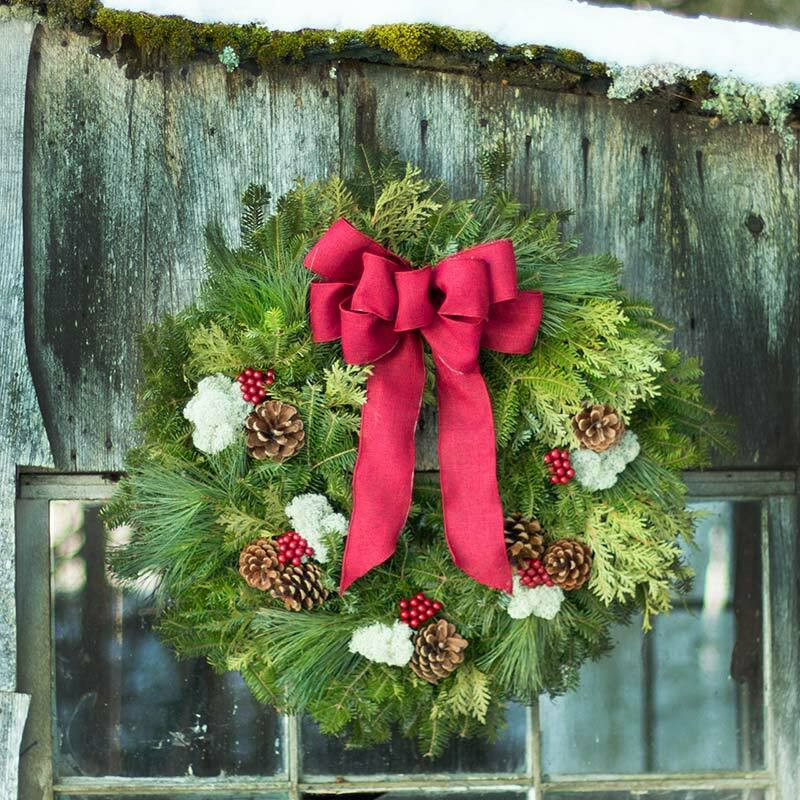Brand-new Winterberry Christmas Wreath from Maine | Variegated Wreath PL12