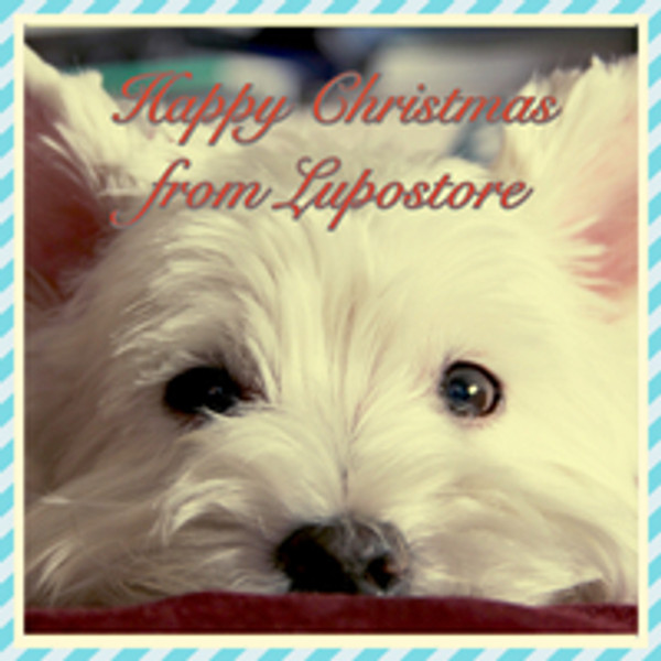 Happy Christmas from Lupostore