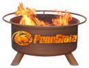 Penn State Fire PIt