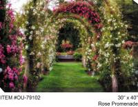 Rose Promenade Canvas Wall Art