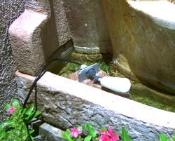 Fountain Water Control Unit - Auto Fill System
