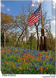 Country Pride Canvas Wall Art