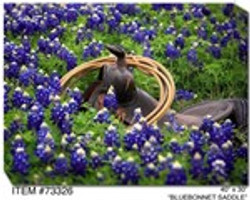 Bluebonnet Saddle Canvas Wall Art