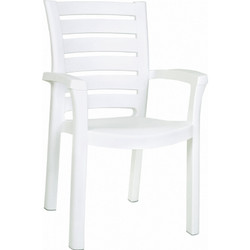 Marina Resin Dining Armchair (Set of 4)