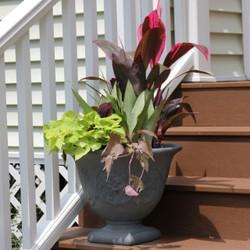 Sunnydaze Darcy Elegant Vines Indoor/Outdoor Planter Pot, 16-Inch Diameter