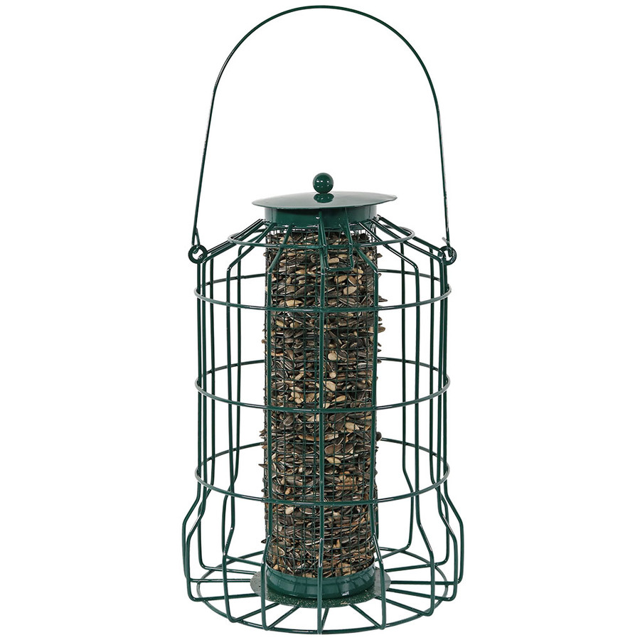 "10"" Feeder with Seed"