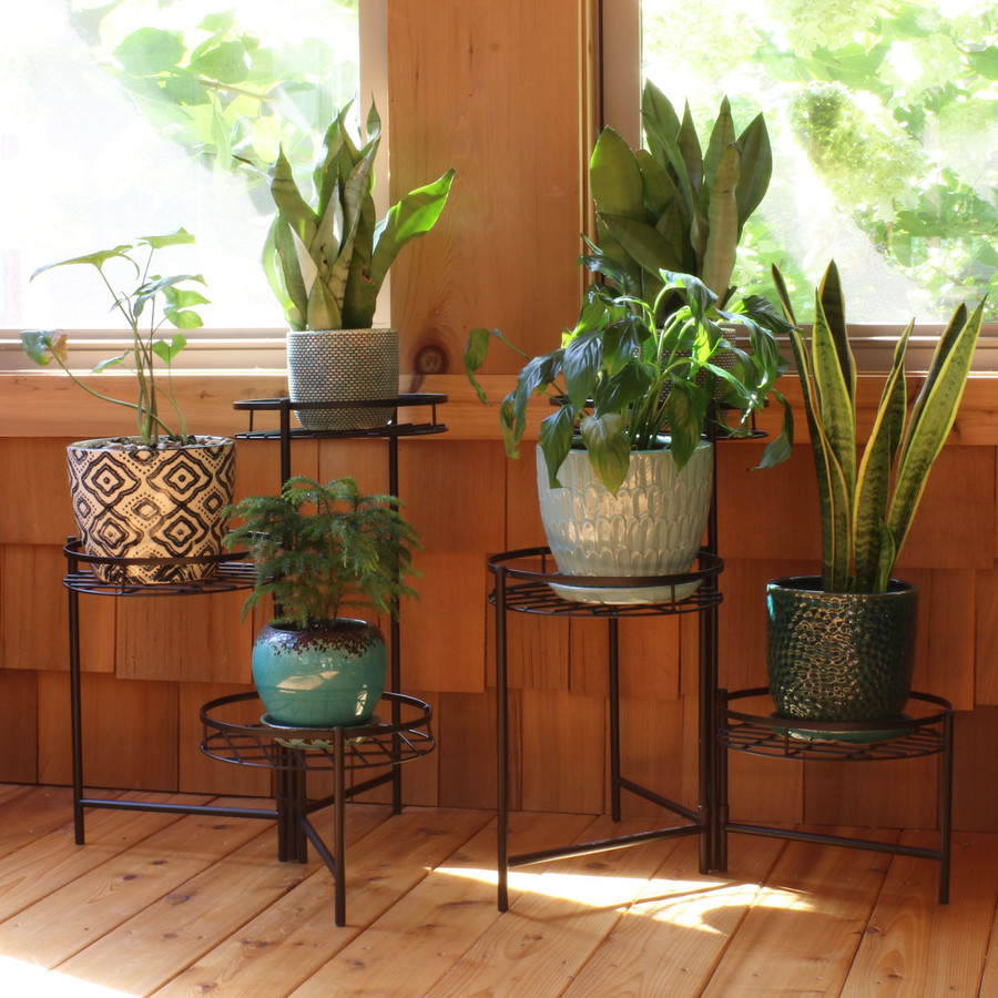2 Stands with Plants Indoors (Plants not Included)