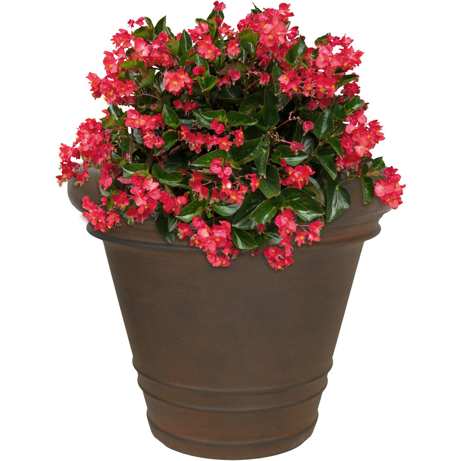 Crozier Indoor/Outdoor Rust Finish Planter, Single