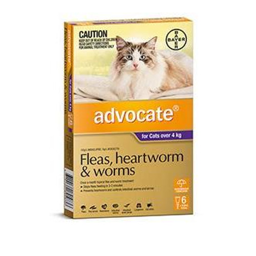 Advocate for Large Cats over 4 kg - 6 Pack