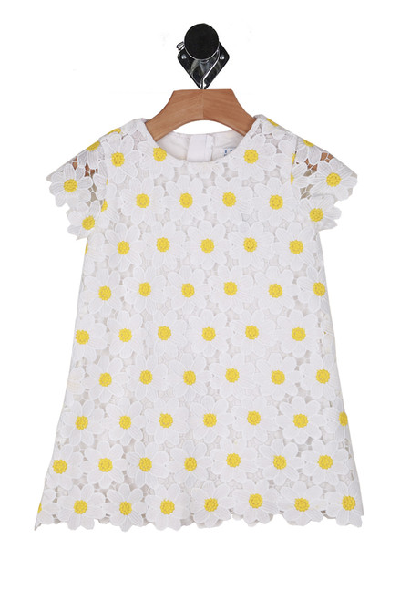 Daisies All Over Mod Dress (Toddler/Little Kid)