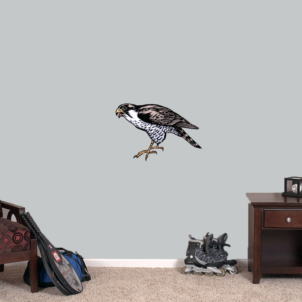 "Falcon Mascot Printed Wall Decals 18"" wide x 12"" tall Sample Image"