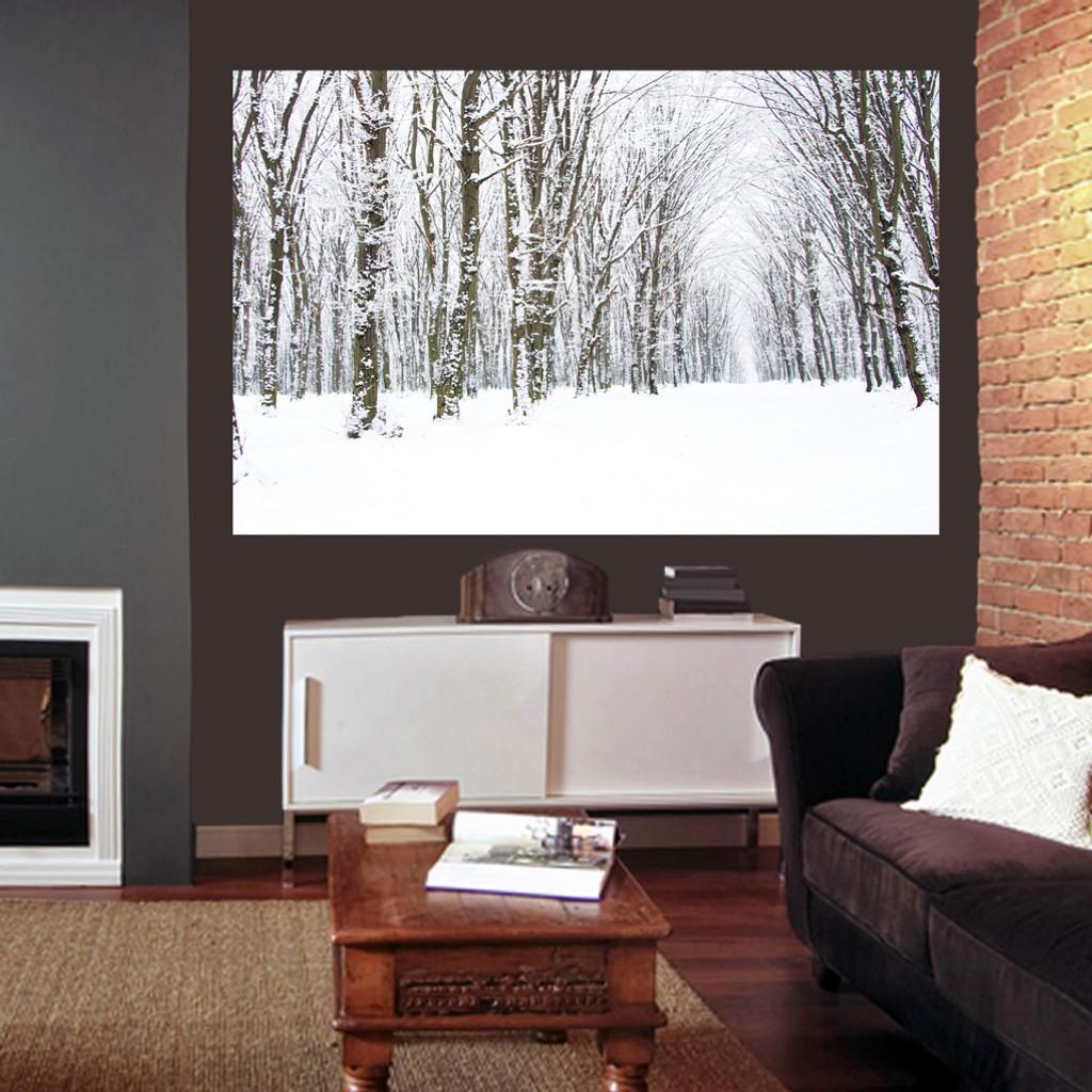 Winter Woods Scene