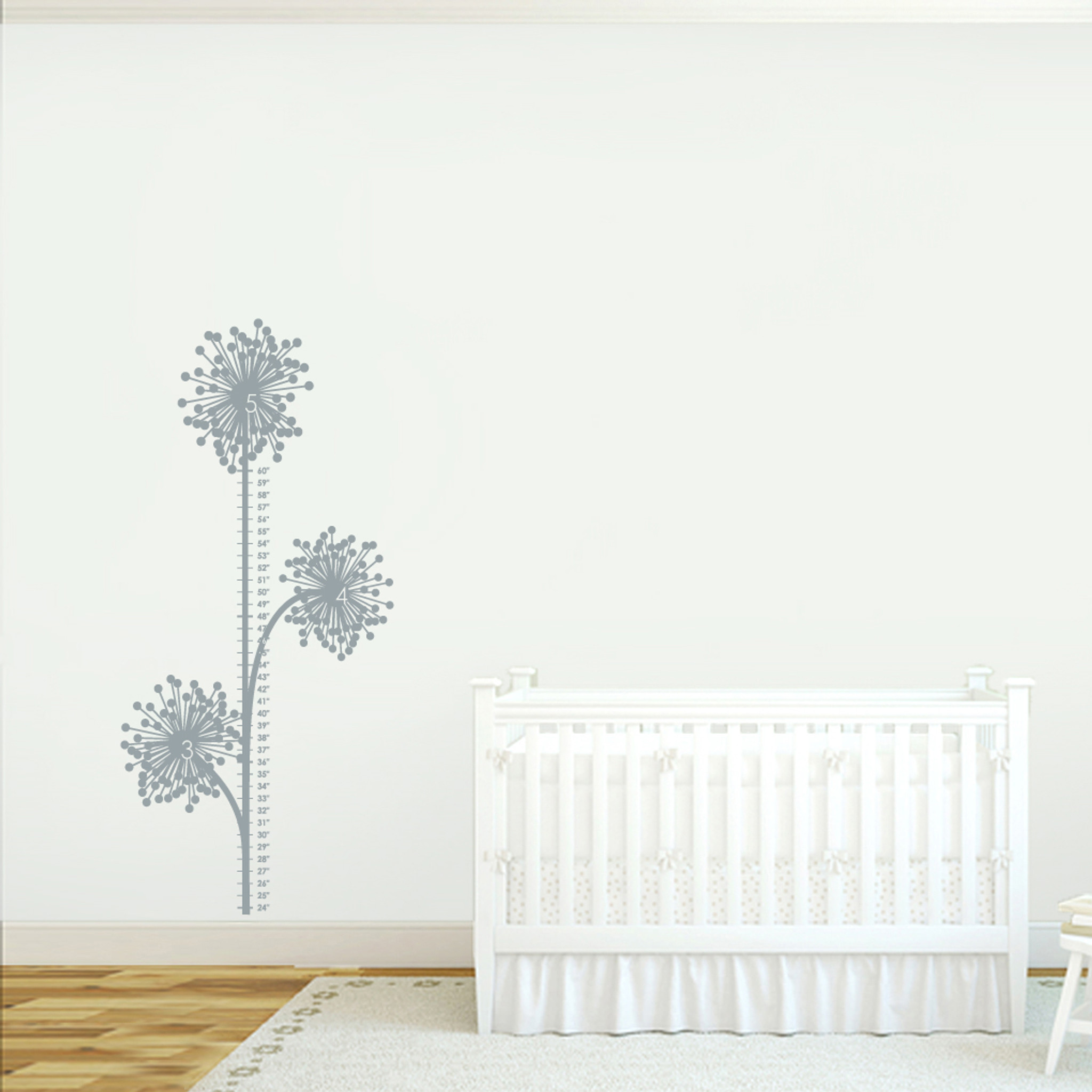 Dandelion Growth Chart Wall Decals Wall Decor Stickers