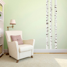 Birch Trees Printed Wall Decals Small Sample Image