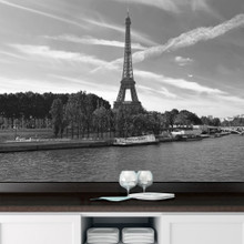 Black & White Eiffel Tower Paris Scene