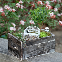 Small Drawer Planter