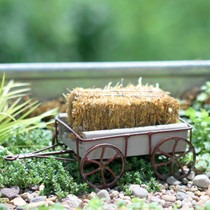 Little Farm Wagon