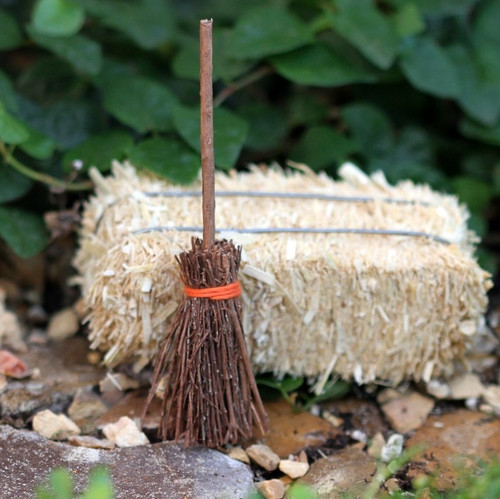 Witch's Broomstick