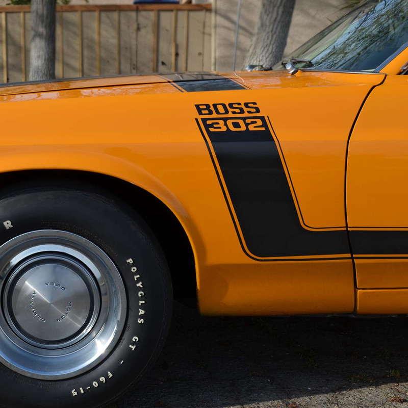 Best Ever 1970 BOSS 302 Stripe Kit