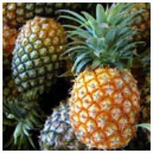 White Pineapple Balsamic