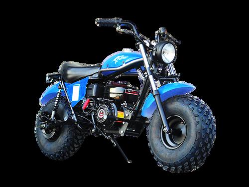 TrailMaster MB200 Mini Bike