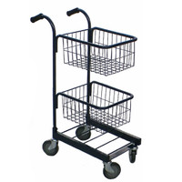 Two Self Basket Trolley (ED1)