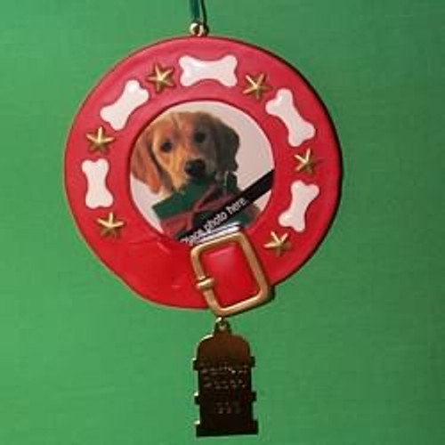 1993 Special Dog