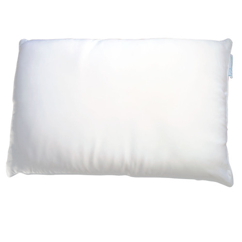 Silk Pillow by Cozy Earth