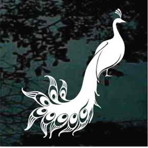 Peacock Standing