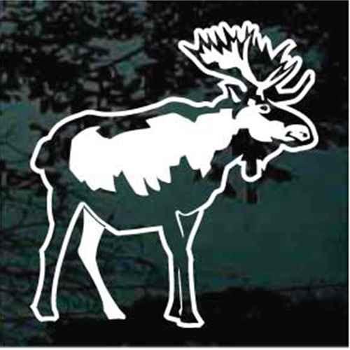 Detailed Moose