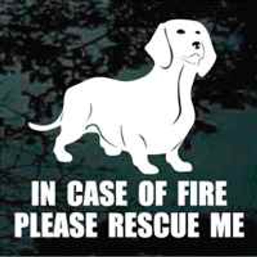 Dachshund Standing Fire Rescue
