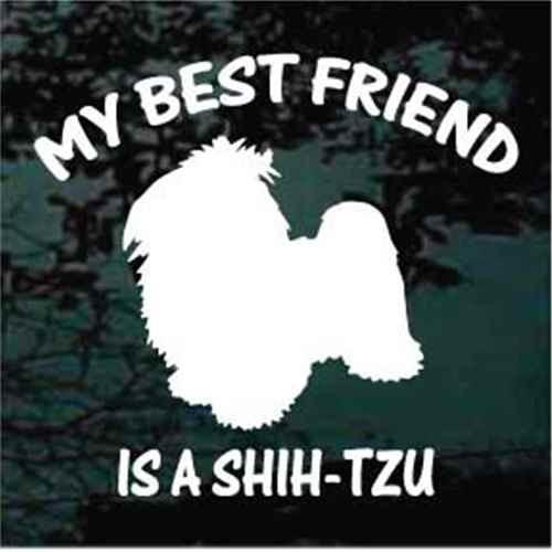 Shih-Tzu Best Friend