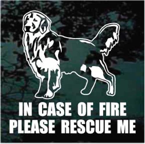 Golden Retriever Fire Rescue