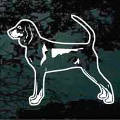 Black & Tan Coonhound Stance