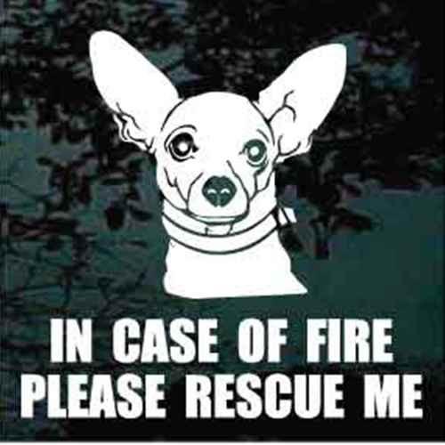 Chihuahua Fire Rescue