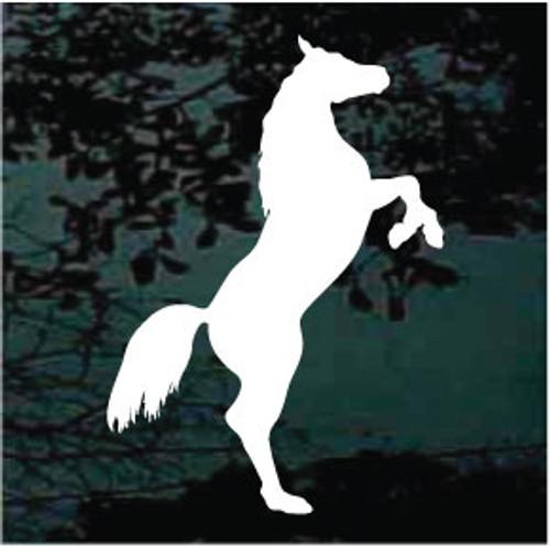 Arabian Horse 03