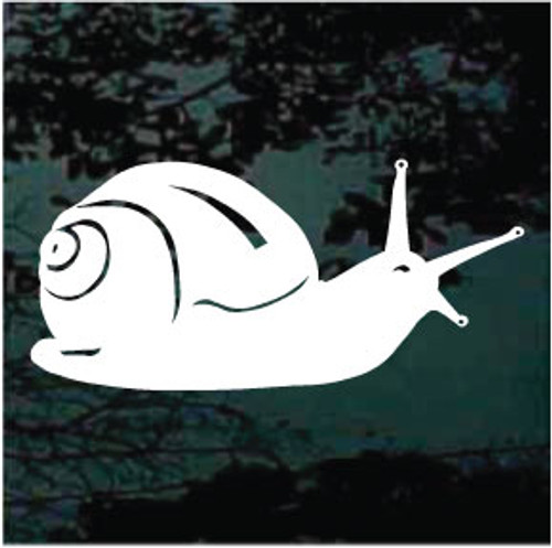 Solid Snail