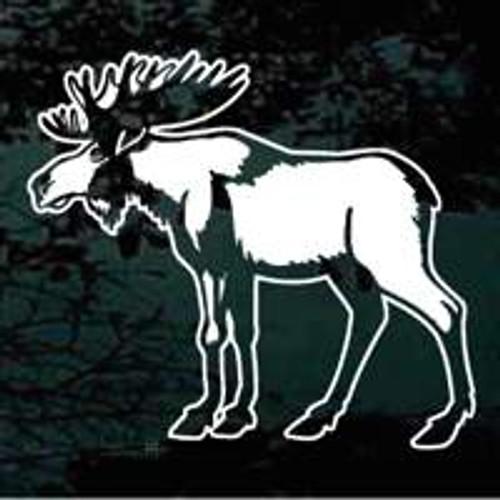 Moose (06)