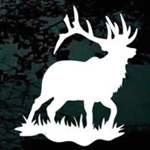 Elk 04